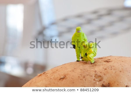 Group of Researchers in protective suit inspecting a potato. Stock photo © Kirill_M