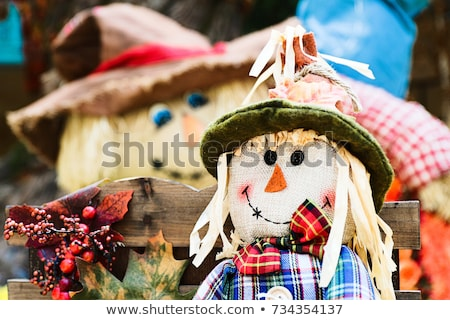 пугало · фермы · области · осень · праздник - Сток-фото © mkucova