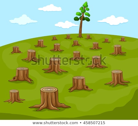 Stock photo: Cut Down Pine