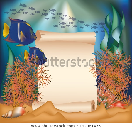 Underwater card with old paper scroll, vector illustration Stock photo © carodi
