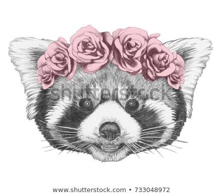 Kroki panda taç bağbozumu vektör mutlu Stok fotoğraf © kali
