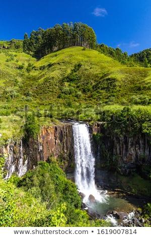 водопад · природы · резерв · ЮАР · трава · горные - Сток-фото © intsys