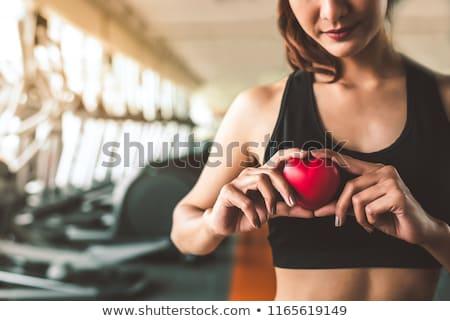 Kalp uygunluk insan kardiyovasküler organ çalışma Stok fotoğraf © Lightsource