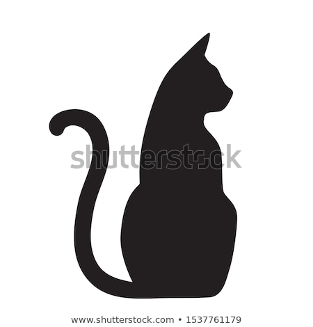 Photo stock: Silhouette · blanche · chat · design · art