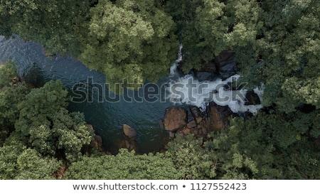Vízesés Sri Lanka egy vízesések vidék víz Stock fotó © Mikko