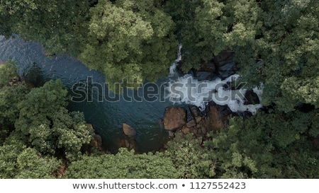waterfall ella in sri lanka stock photo © mikko