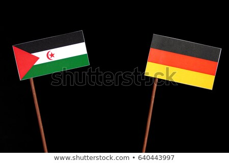 Germany and Western Sahara Flags  Stock photo © Istanbul2009