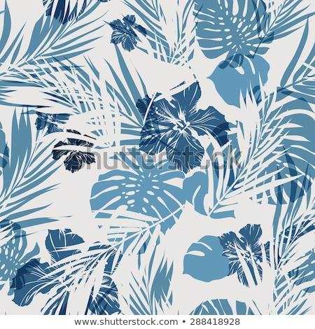 Végtelenített álca minta pálmalevelek papír textúra Stock fotó © Karamio