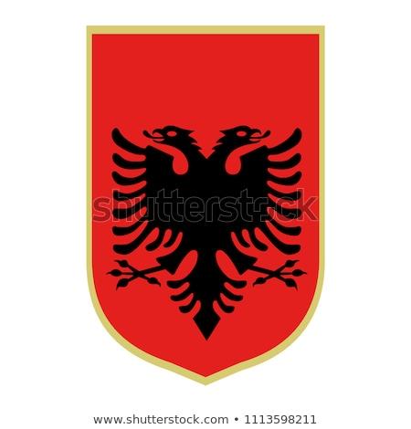 Central 2 Europe Shield flag Stock photo © Darkves
