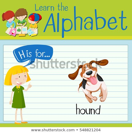 Flashcard letter H is for hound Stock photo © bluering