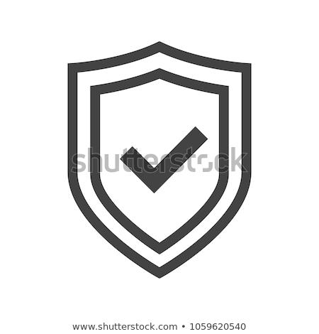 Biztonság beállítások ikon szürke gomb terv Stock fotó © WaD