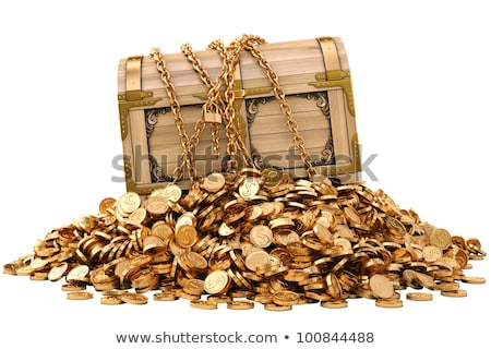 vintage wooden chest with golden coin 3D illustration isolated on white background Stock photo © tussik