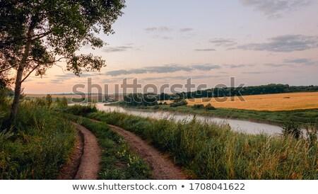 Stock fotó: Jelenet · folyó · mező · illusztráció · fű · tájkép