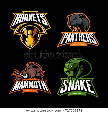 Stock photo: Black Panther American Football Mascot