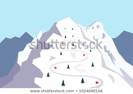 предупреждение флаг лыжных снега белый Сток-фото © ldambies