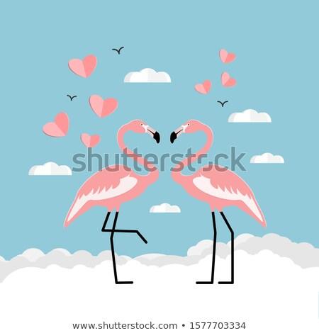 Iki pembe sevmek örnek çift kanatlar Stok fotoğraf © adrenalina