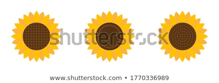 Flora Abstraction Flat Icon Stock photo © ahasoft