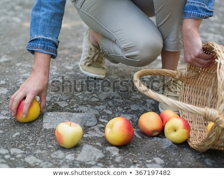 Girl and Woman looking at apple basket Stock photo © IS2