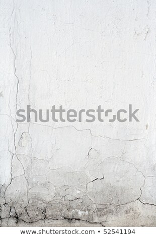 Cement Wall With Signs Of Past Water Damage Foto stock © pashabo