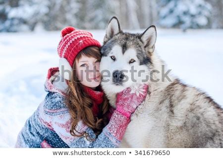 genç · kız · boğuk · köpek · kar · kış · kız - stok fotoğraf © fotoyou