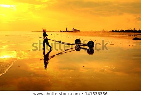 Vietnam traditioneel vissen rivier mooie landschap Stockfoto © romitasromala