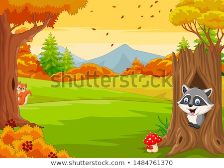 Cartoon wasbeer illustratie baby dier glimlachend Stockfoto © cthoman