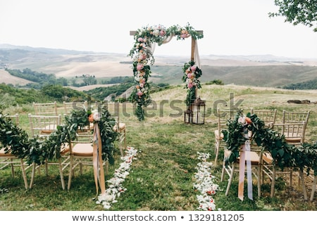 beautiful wedding ceremony in the park stock photo © ruslanshramko
