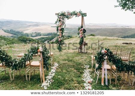 Foto stock: Belo · cerimônia · de · casamento · parque · ensolarado · céu · flor