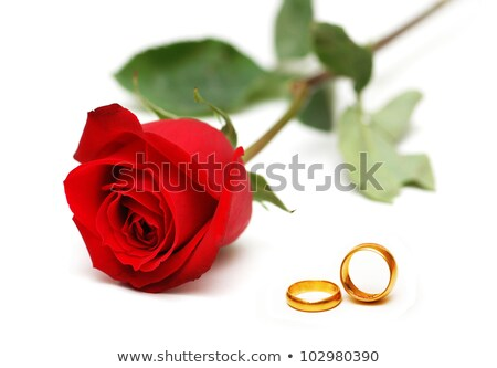 Close up Gold ring and Red roses  Stock photo © stoonn