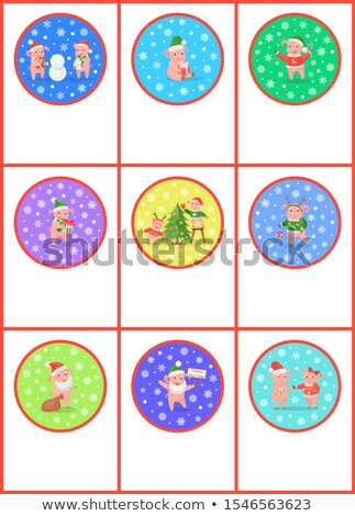 Nowy rok wieprzowych sosny choinka zestaw wektora Zdjęcia stock © robuart