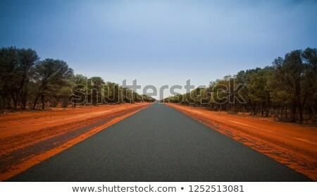 Red desert plains of outback Australia Stock photo © lovleah