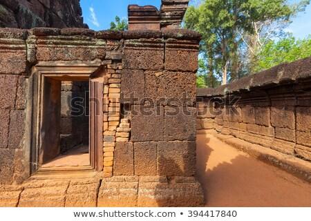 fatörzs · Angkor · templom · hatalmas · Kambodzsa · fa - stock fotó © lichtmeister