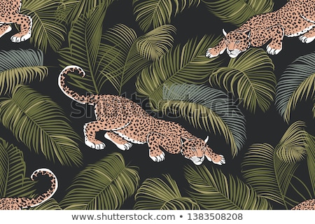 Areca Palm Tropical Exotic Leaf Color Hand Drawn Vector Stock photo © pikepicture