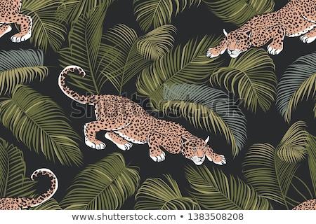 手のひら 熱帯 エキゾチック 葉 色 手描き ストックフォト © pikepicture