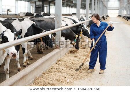 Gelukkig jonge landbouwer werknemer tijdgenoot zuivelfabriek Stockfoto © pressmaster