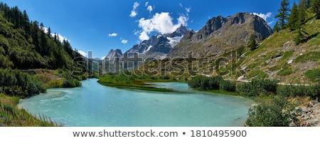 Völgy nyár kilátás Olaszország fa természet Stock fotó © Antonio-S