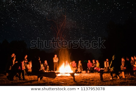 view of bonfire in green forest stock photo © vapi