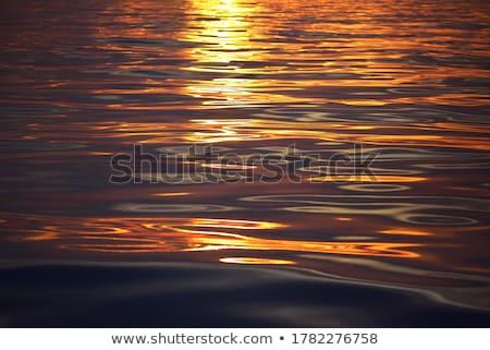 海景 日光 反射 波 銀 ストックフォト © vapi