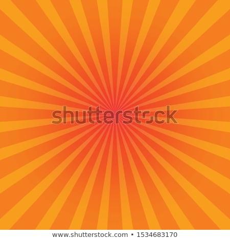 Nap nyár fényes nyaláb stock vektor Stock fotó © kyryloff