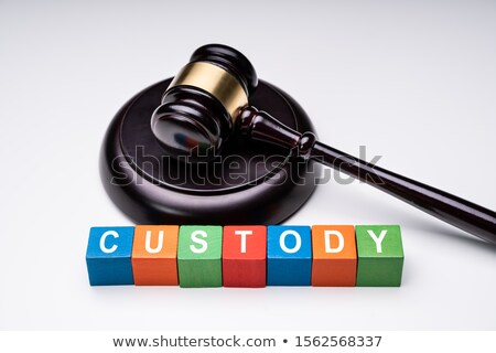 Colorful Cubes With Custody Text Near Gavel On White Background Stock photo © AndreyPopov