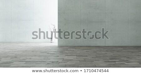 Backlight quarto vazio concreto parede paredes Foto stock © sedatseven