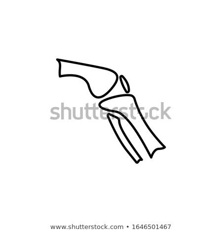 Osso pé ícone vetor ilustração Foto stock © pikepicture