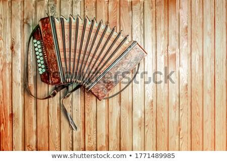 аккордеон кривая клавиатура аннотация художественный музыку Сток-фото © simply