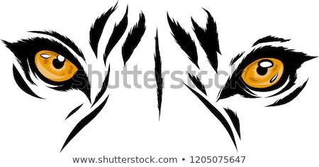 tijger · illustratie · portret · vurig · haren · kunst - stockfoto © aelice
