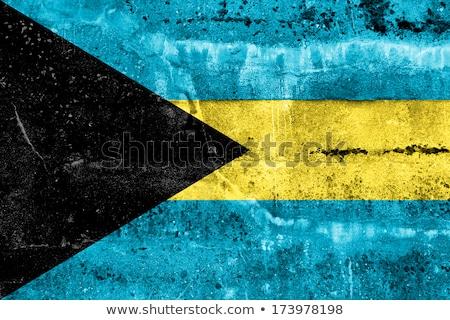 Bahamák grunge zászló öreg klasszikus grunge textúra Stock fotó © HypnoCreative