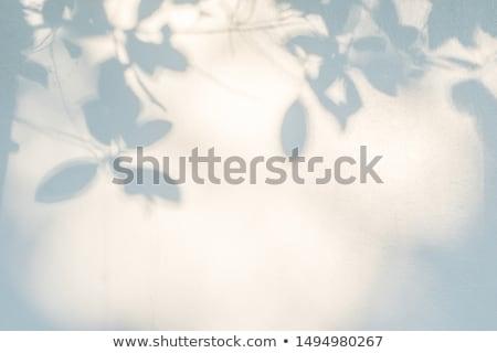 Dense Natural Background Stock photo © newt96