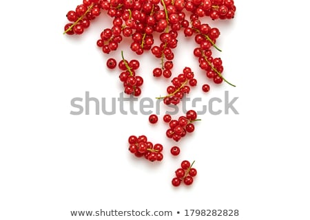 Redcurrant Stock photo © Stocksnapper