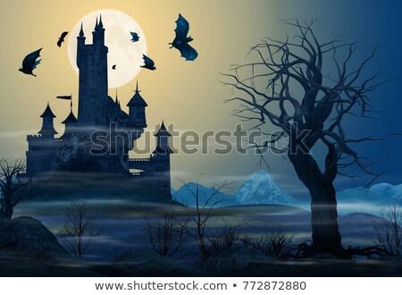 oude · kasteel · maan · vliegen · rond · gebouw - stockfoto © AnnaVolkova