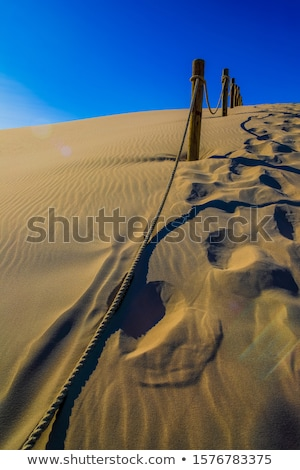 Leba dunes - Unesco place. Stock photo © tomasz_parys