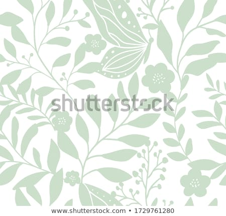 Padrão flores borboleta branco verde abstrato Foto stock © olgaaltunina